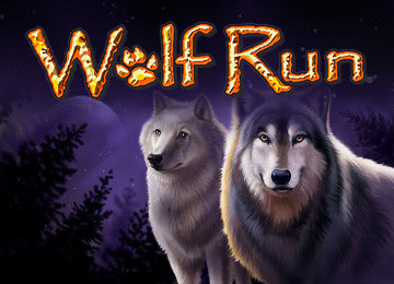 The best Wolf Run slot machine review, casinos, ways to play and more